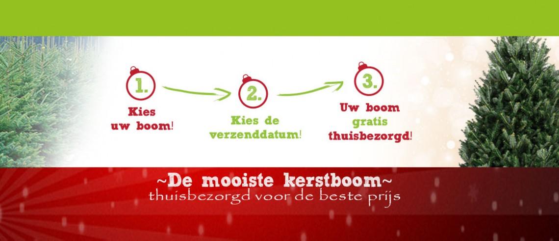 Kerstboom bestellen online